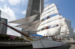 日本丸総帆展帆