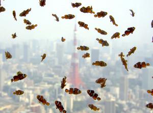 ニモと東京タワー