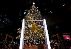 世界の果てまでイッテQ!クリスマスツリー