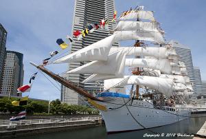 日本丸 総帆展帆と満船飾