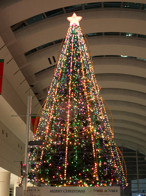 クイーンズスクエア「ゆず」のクリスマスツリー