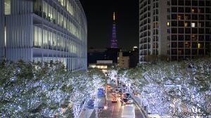 六本木ヒルズけやき坂イルミネーションと東京タワーダイヤモンドヴェール