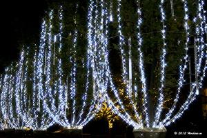 東京ミッドタウンのクリスマス2012
