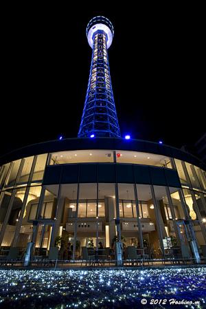 横浜マリンタワー・スターダストイルミネーション