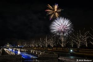国営昭和記念公園 Winter Vista Illumination 2012 冬の花火