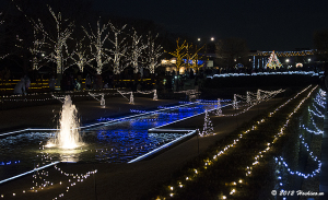 国営昭和記念公園 Winter Vista Illumination 2012