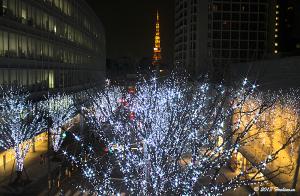六本木ヒルズけやき坂通りと東京タワー