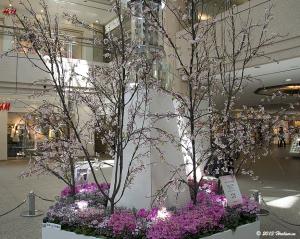 横浜ランドマークプラザのクリスタル桜