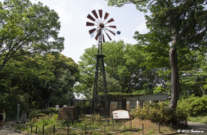 横浜・港の見える丘公園 フランス山の風車