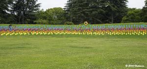 国営昭和記念公園、1000本のかざぐるま