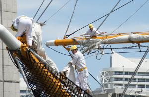 帆船日本丸 展帆作業