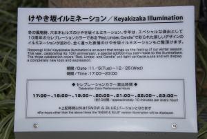 六本木ヒルズ・けやき坂イルミネーション2013