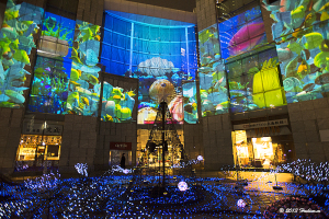 Caretta Illumination 2013『魚たちはクリスマスの夢をみる White X'mas in the sea』