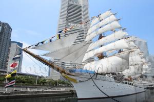 帆船日本丸の総帆展帆と満船飾