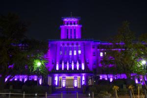 ピンクリボンかながわイルミネーション 神奈川県庁
