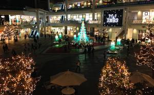 ラゾーナ川崎プラザ クリスマスイルミネーション