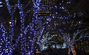 MIDTOWN CHRISTMAS(ミッドタウン・クリスマス)2014  Welcome Illumination