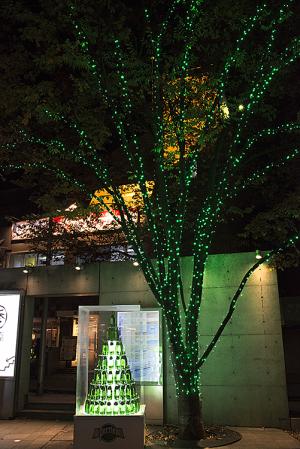 表参道イルミネーション 2014