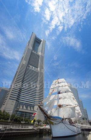 帆船日本丸の総帆展帆&満船飾