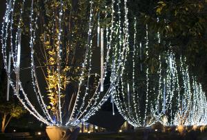 シャンパンツリー 「ミッドタウン・クリスマス2015」