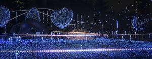 東京ミッドタウン「スターライトガーデン 2015」