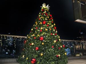 横浜ワールドポーターズ ファンタスティッククリスマス2015
