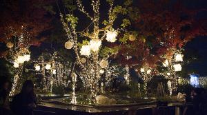 東急プラザ 表参道原宿   2015 OMOHARA illumination