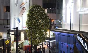 ラフォーレ原宿のクリスマスツリー