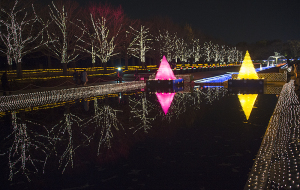 昭和記念公園「WinterVistaIllumination2015」