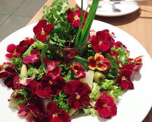 エディブルflowerサラダ