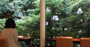 森のカフェバー「Cafe & Bar YUI-AN 結庵」