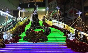 シンデレラステップのクリスマスイルミネーション