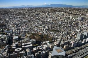 横浜の街並みと富士山