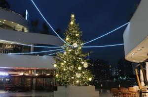 横浜ベイクォーターのクリスマスイルミネーション
