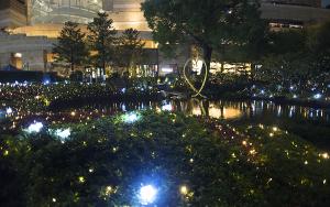 毛利庭園イルミネーション(Mohri Garden Illumination)