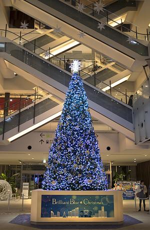 マークイズみなとみらいの「Brilliant Blue ★ Christmas