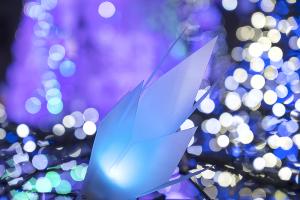 Caretta Illumination 2018  「アナと雪の女王」