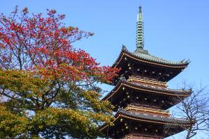 旧東叡山寛永寺五重塔