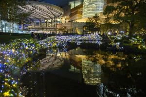 Mohri Garden Illumination