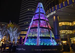 スターライトツリー(Starlight Tree)2019