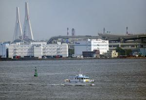 横浜税関 監視艇 「 つくばね 」