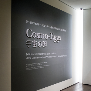 Cosmo-Eggs|宇宙の卵