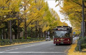観光スポット周遊バス「あかいくつ」