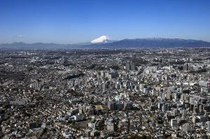 横浜から見た富士山