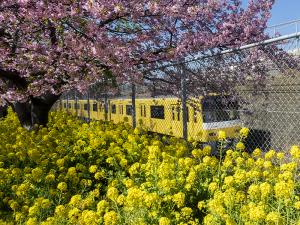 幸せを運ぶ黄色い電車 KEIKYU HAPPY TRAIN